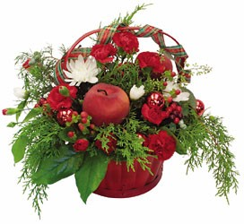 Holiday Wish In Louisville, KY, In Kentucky, Schmitt's Florist