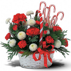 Candy Cane Basket In Louisville, KY, In Kentucky, Schmitt's Florist