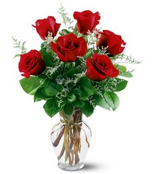 6 Red Roses In Louisville, KY, In Kentucky, Schmitt's Florist