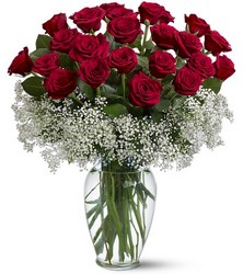 Two Dozen Red Roses with Baby Breath ring In Louisville, KY, In Kentucky, Schmitt's Florist