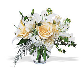 White Roses and Lilies In Louisville, KY, In Kentucky, Schmitt's Florist