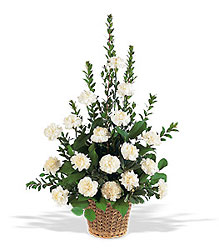 White Simplicity Basket In Louisville, KY, In Kentucky, Schmitt's Florist