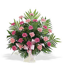 Basket with Pink Carnations In Louisville, KY, In Kentucky, Schmitt's Florist