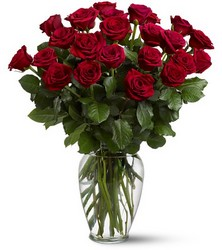 Two Dozen Red Roses In Louisville, KY, In Kentucky, Schmitt's Florist