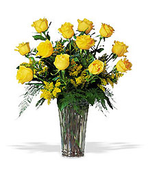 A Dozen Yellow Roses In Louisville, KY, In Kentucky, Schmitt's Florist