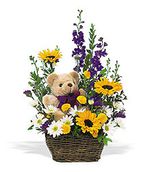 Basket & Bear In Louisville, KY, In Kentucky, Schmitt's Florist