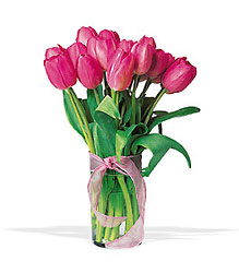 Pink Tulip Bouquet In Louisville, KY, In Kentucky, Schmitt's Florist