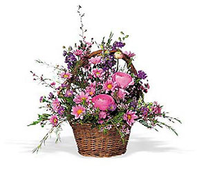 Basket of Spring In Louisville, KY, In Kentucky, Schmitt's Florist