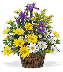 Smiling Spring Basket In Louisville, KY, In Kentucky, Schmitt's Florist