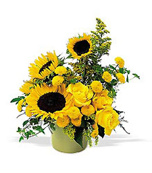 A Pot of Sunflowers In Louisville, KY, In Kentucky, Schmitt's Florist
